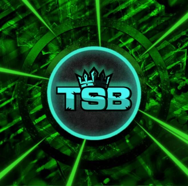 Rogue Company: Posts - TSB RECRUITMENT  image 2
