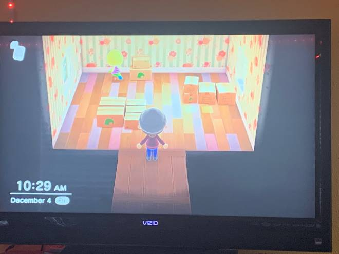 Animal Crossing: Trading - Twiggy in Boxes ! looking for nmts :)  image 1