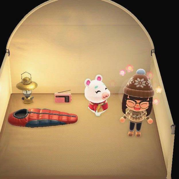 Animal Crossing: Posts - New villager ☺️❄️ image 2
