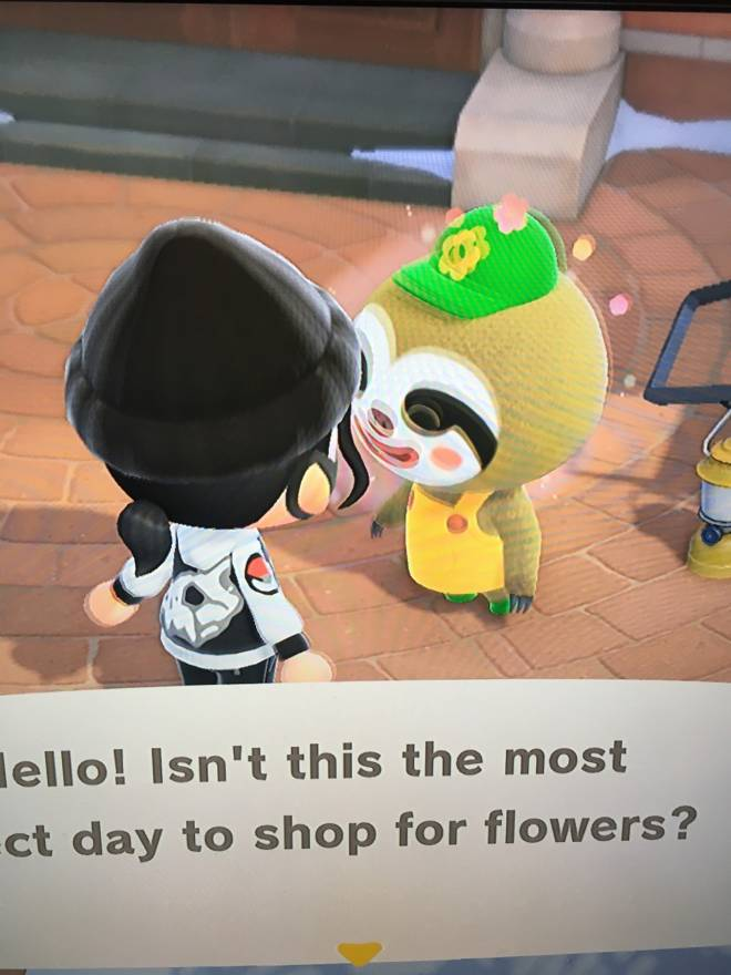 Animal Crossing: Looking for Group - New and need help getting started? Just want to explore another island? Fishing? I also have Leif h image 4