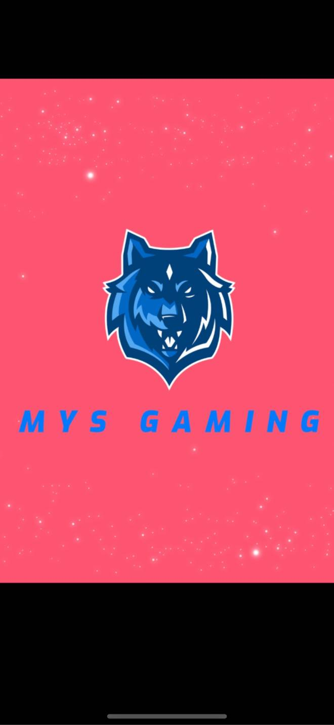 The Division: Looking for Group - RECRUITING! Looking for ACTIVE and good people to join MYS. An up and coming gaming community/clan image 3