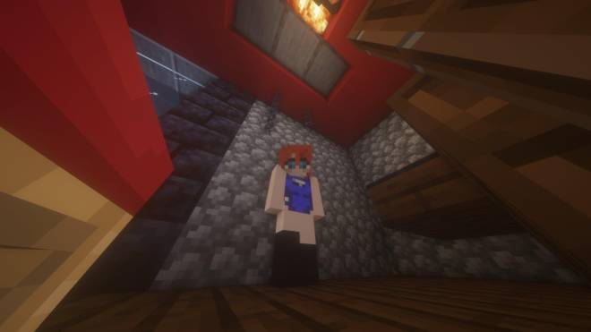 Minecraft: Memes -  A look inside my starter base's bedroom image 2