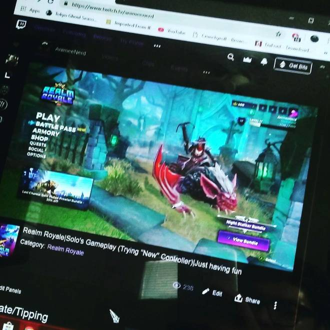 Realm Royale: General - Monday stream underway! image 1