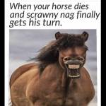 That's why you get horse insurance