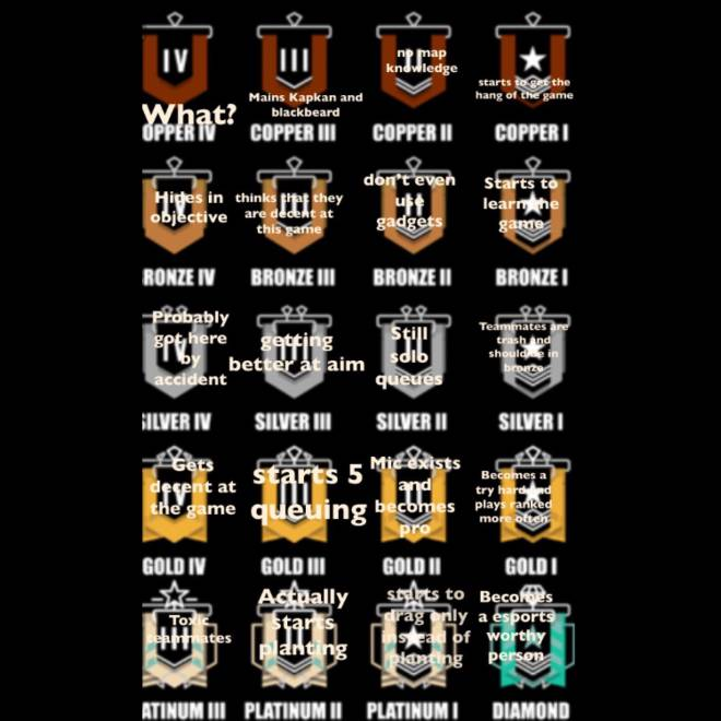 Rainbow Six: Memes - All ranks explained image 1