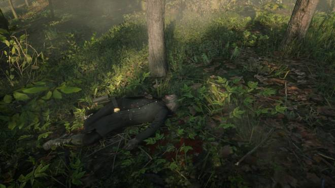 Red Dead Redemption: General - just enjoying taking photos 😁 image 10