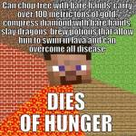 Daily MC meme #3