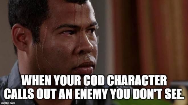 Call of Duty: Memes - So true image 1