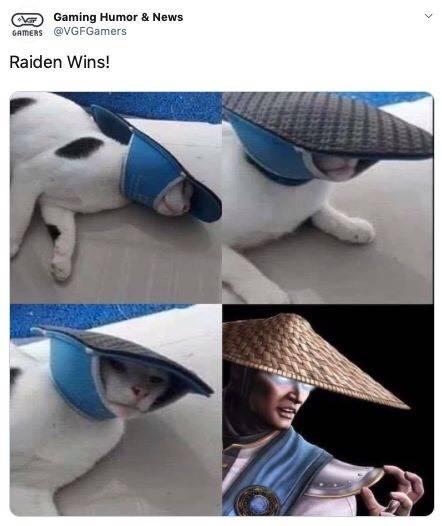 Mortal Kombat: Memes - If Raiden was transformed  image 1