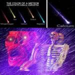 MAXIMUM CALCIUM