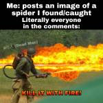 Everyone when I post a image of a spider