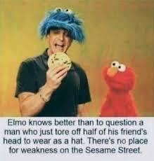 Entertainment: Memes - Don't question Elmo  image 1