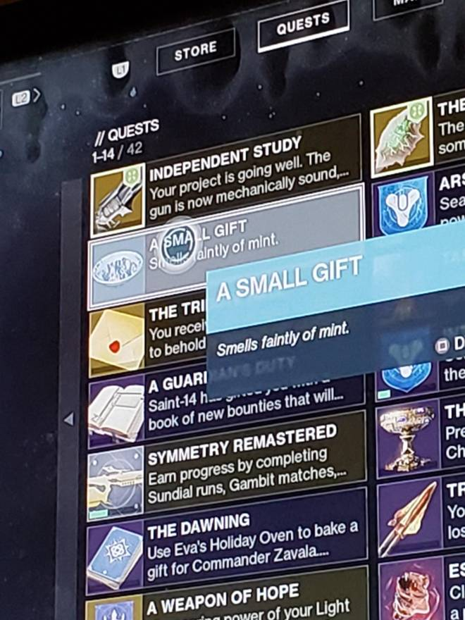 Destiny: General - Small Gift image 2