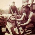 Time to kill some nazi dogs