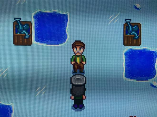 Stardew Valley: General - I Won The Fishing Competition! 😎 image 1