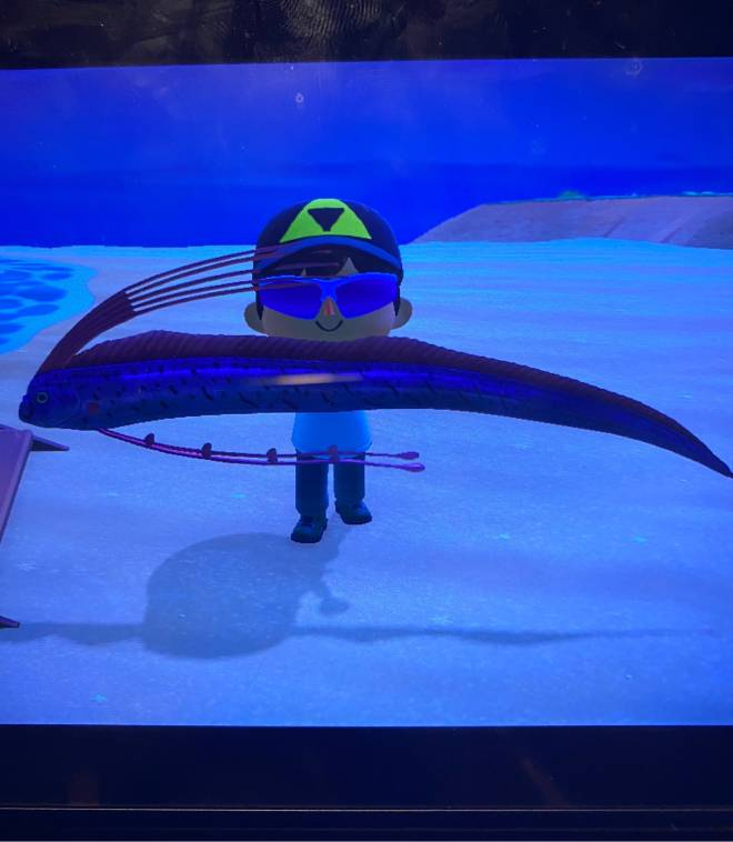 Animal Crossing: Posts - I finally caught a oarfish!! image 2