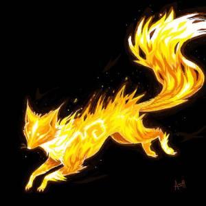 (R.F.C.)FireFooxz