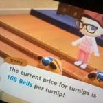 165 Turnip Price