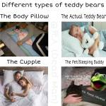 Different types of teddy bears