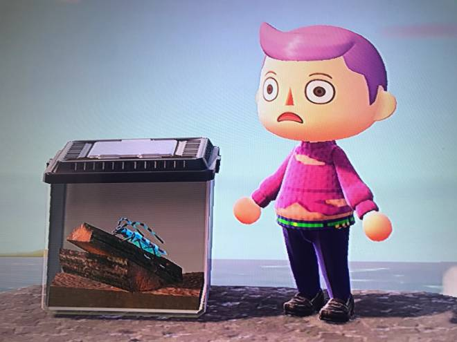Animal Crossing: Posts - My Doppio cosplay (From Jjba) image 3