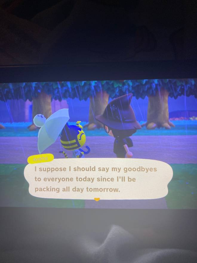 Animal Crossing: Posts - Ankah is moving out  image 2