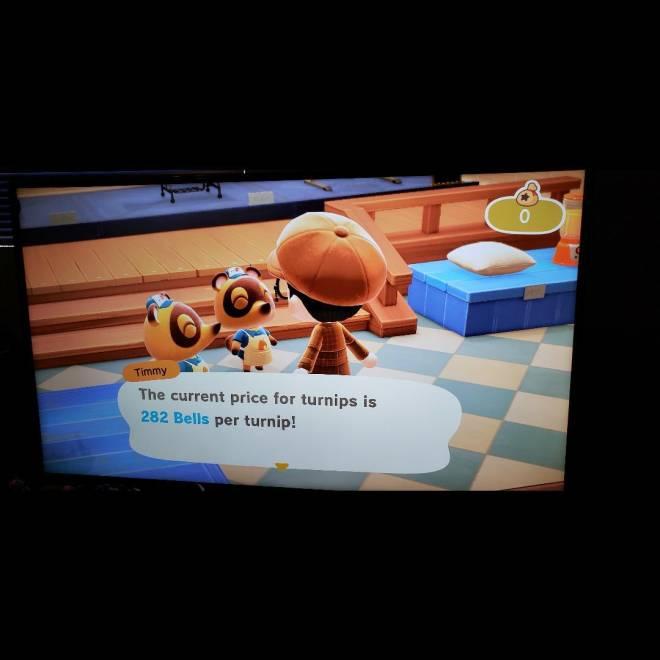 Animal Crossing: Turnips! - 282 turnip prices image 2