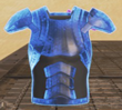 110px-Rare_BodyShield_Item.png