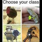 Choose your class