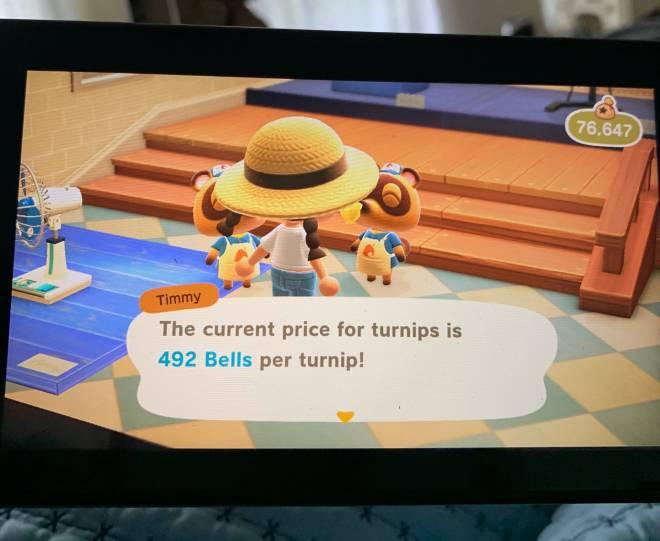 Animal Crossing: Turnips! - Turnip prices 492!!! image 2