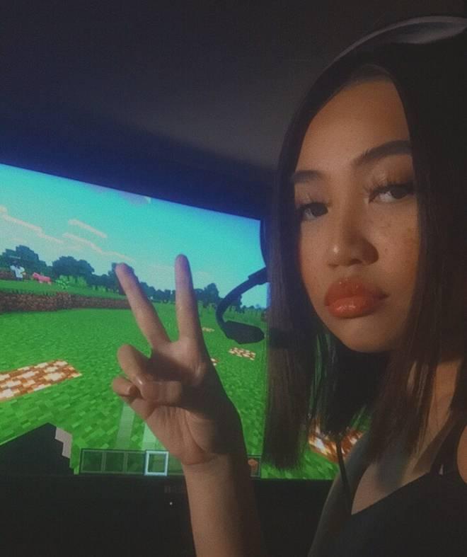 Minecraft: General - do you like minecraft? ⛏☁️✨ image 1