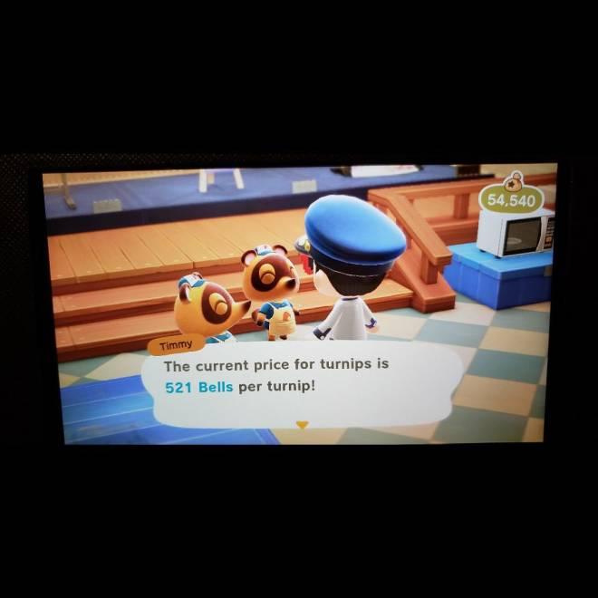 Animal Crossing: Turnips! - 521 turnips (closed) image 2