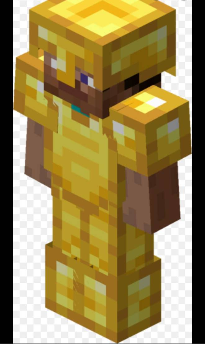 Minecraft: Memes - If you ever feeling useless, just remember gold armor is still garbage, but at least it looks nice. image 1