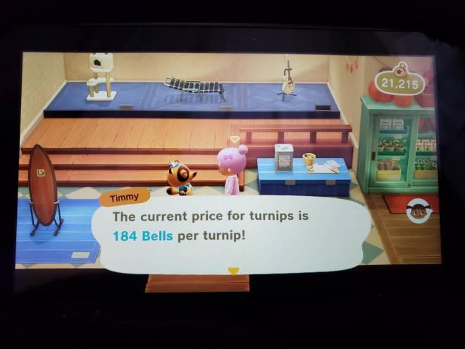 Animal Crossing: Turnips! - Sell them Turnips image 2