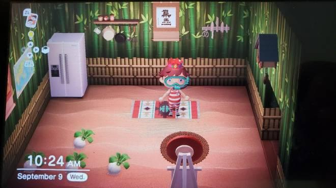 Animal Crossing: Trading - Buying kitchen stuff image 2