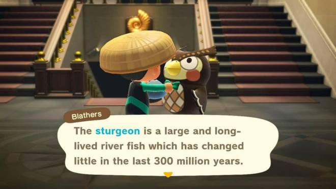 Animal Crossing: Posts - Catch of the Day...Sturgeon! image 2