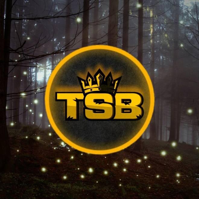 Destiny: General - TSB RECRUITMENT  image 2