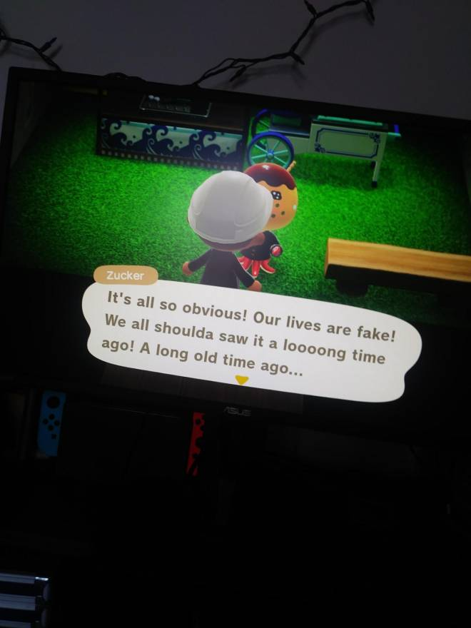 Animal Crossing: Posts - They know now image 2