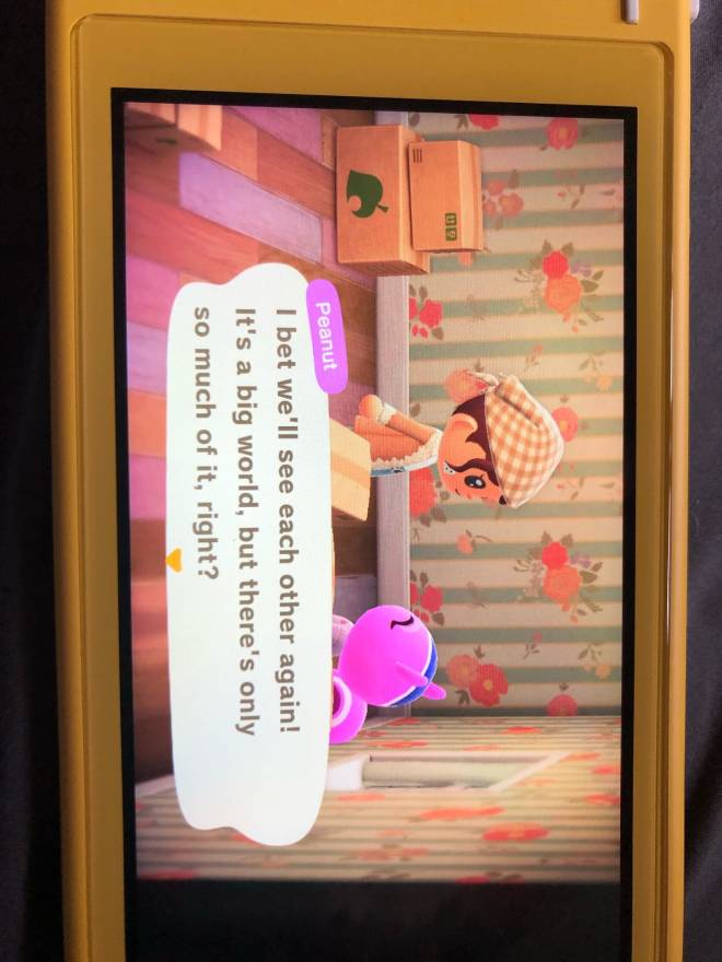 Animal Crossing: Posts - ‼️Peanut is moving‼️ image 2