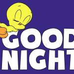 GOOD NIGHT MOOTERS😴😴😴