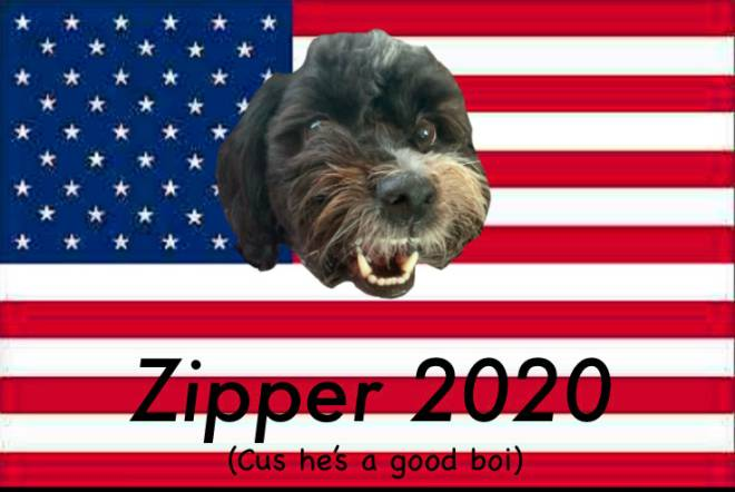 Off Topic: General - Zipper 2020 image 1