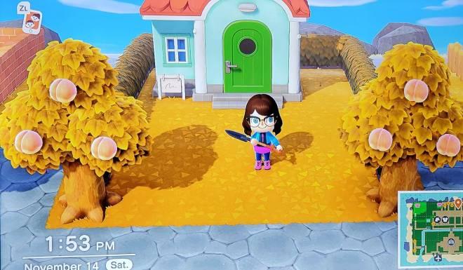 Animal Crossing: Posts - Island Re-Vamp! Day 14! image 3