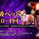 「最上級ペット召喚10 + 1回」が登場!