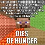 Now introducing......... Mincraft memes!!!