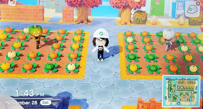 Animal Crossing: Posts - Island Re-Vamp... Finished!!!  😭😭😭 image 14
