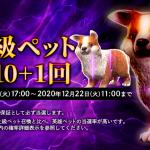 「最上級ペット召喚10 + 1回」再販!