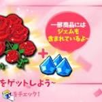 【終了】2日間限定!赤いバラのダブルパック▷助けのお礼に!【12/31 3:00まで】
