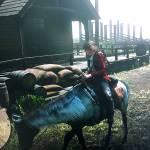 Me and my horse, Shikaruu