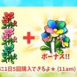 【New】帰ってきた!30%OFF☆彡 花育成パック販売中!【2/12 11:00まで】