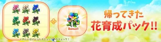 ポケットタウン: event - 【New】帰ってきた!30%OFF☆彡 花育成パック販売中!【4/8 10:00まで】 image 1