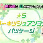 【イベント】「★5ターキッシュアンゴラパッケージ」のお知らせ